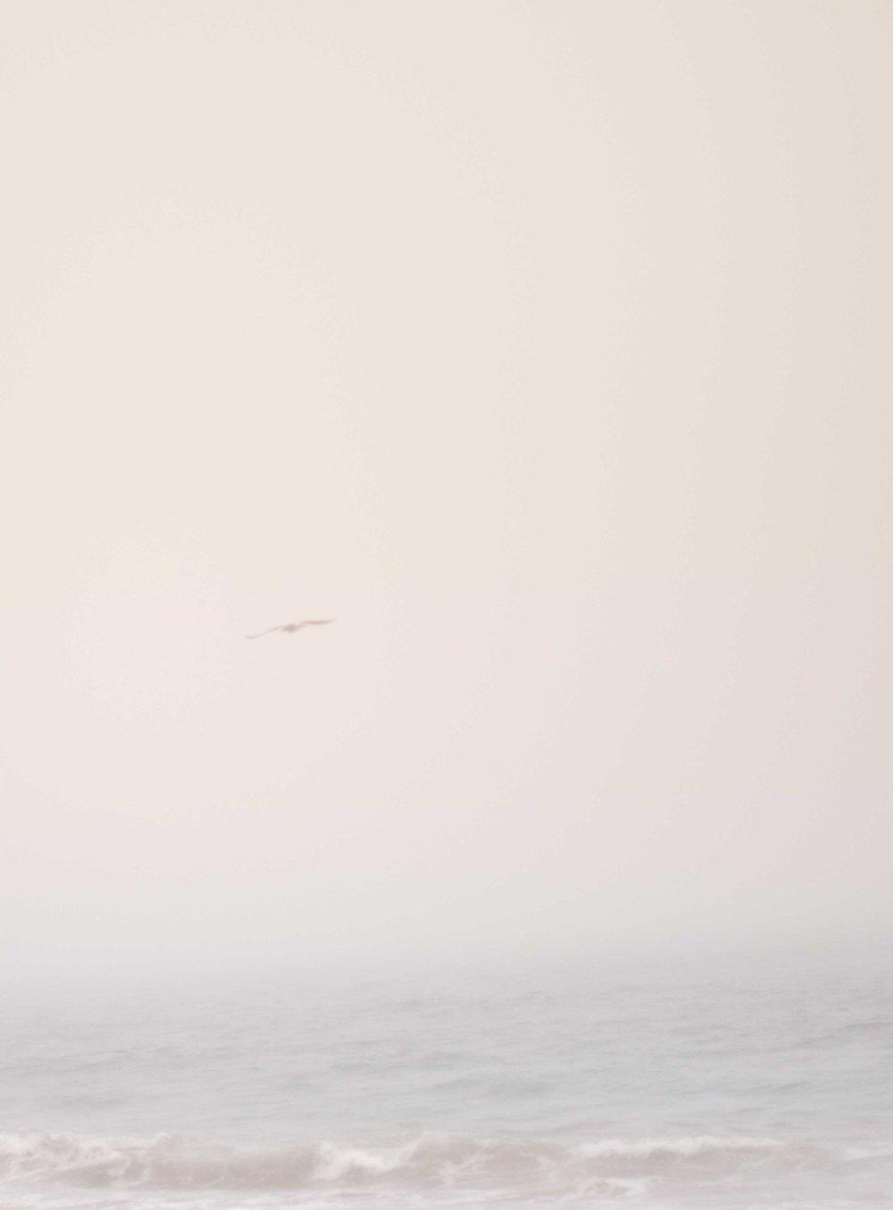 Playa niebla