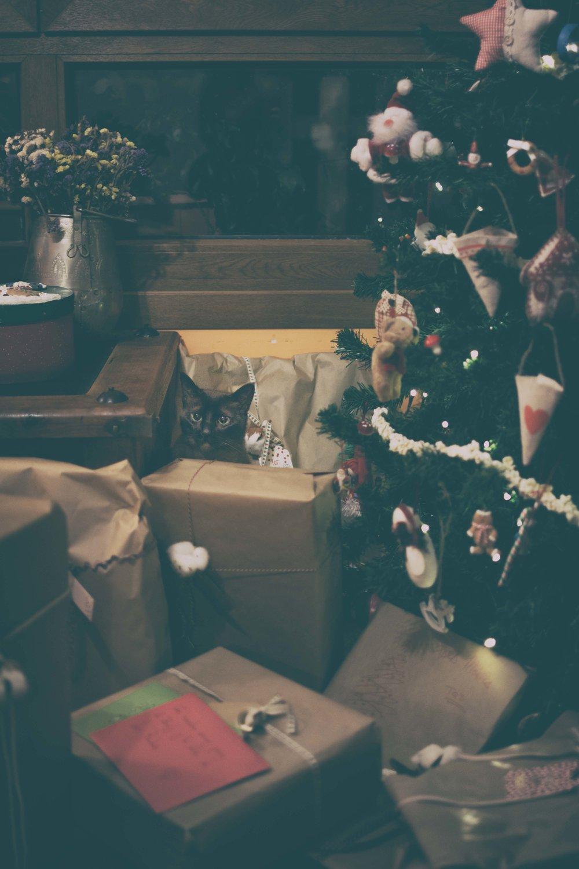 Ideas decoración Navidad-5.jpg