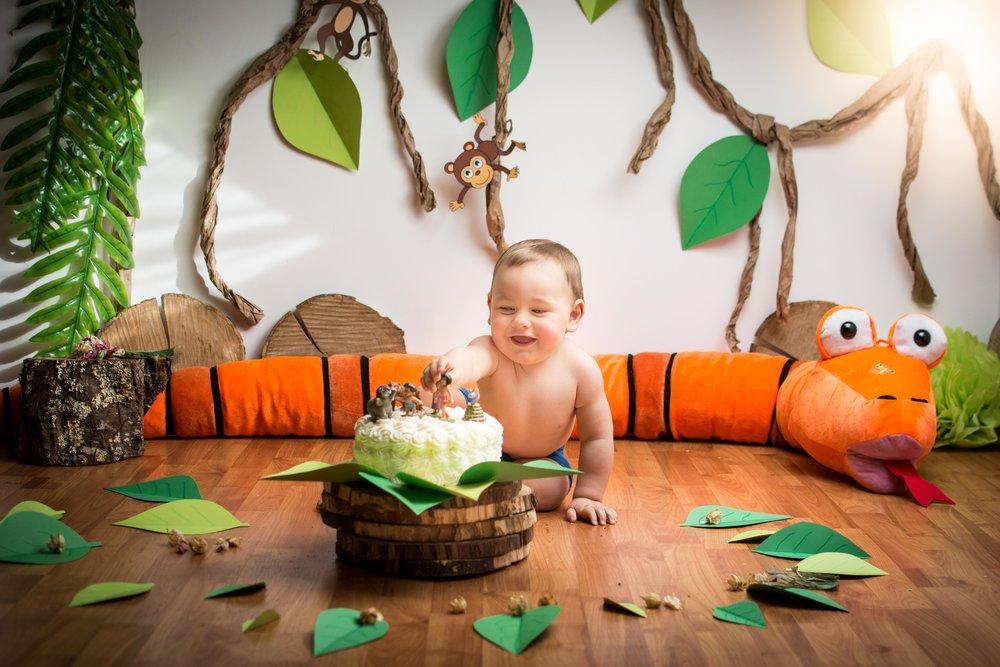 Smash cake el libro de la selva