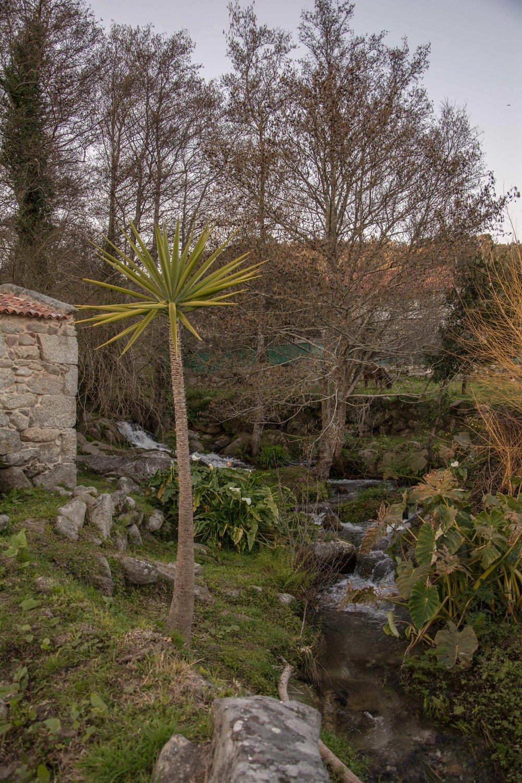 Ruta molinos Galicia