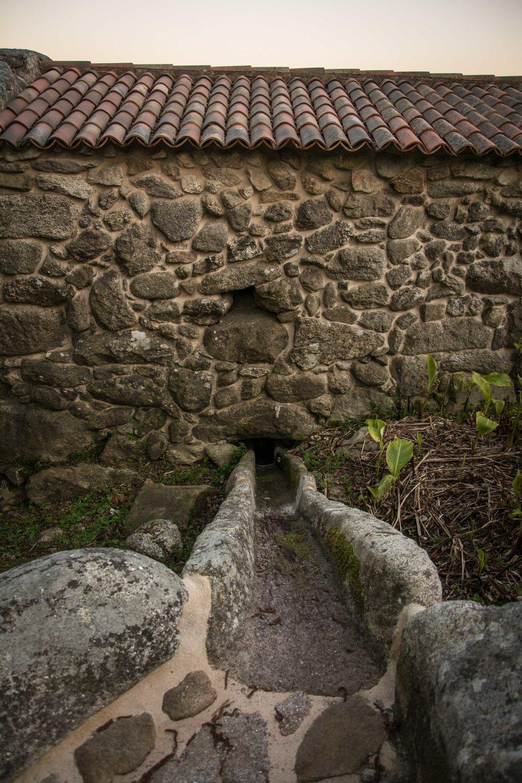 Ruta molinos Samieira