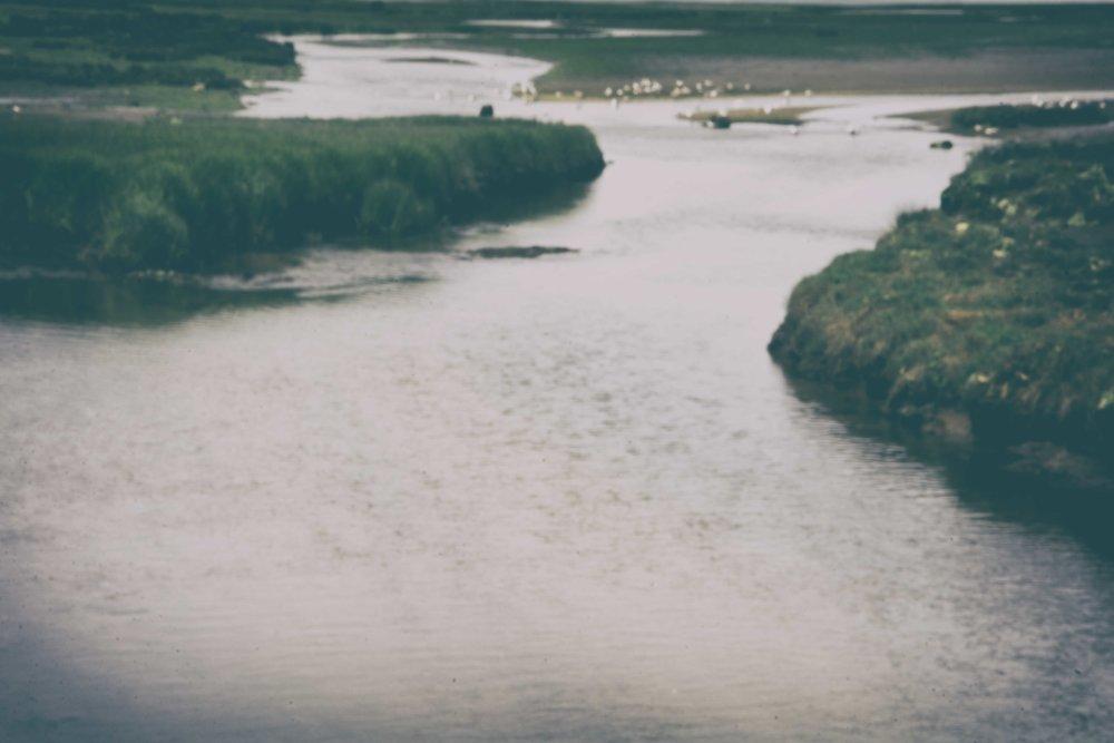 Ruta das Telleiras Meaño