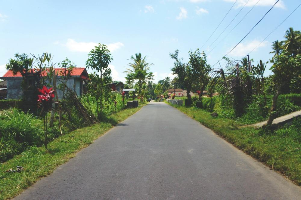 Bike Tour Road