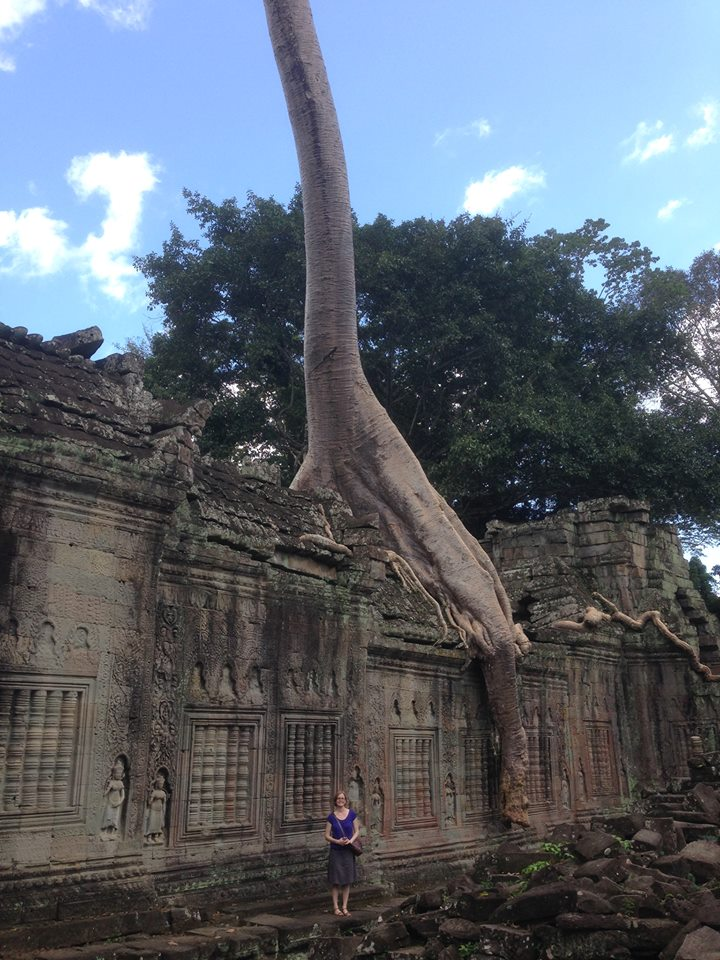 Ancient temples, ancient trees