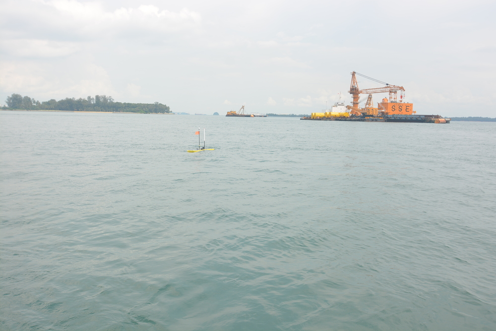 Fajar swimming in Singapore waters