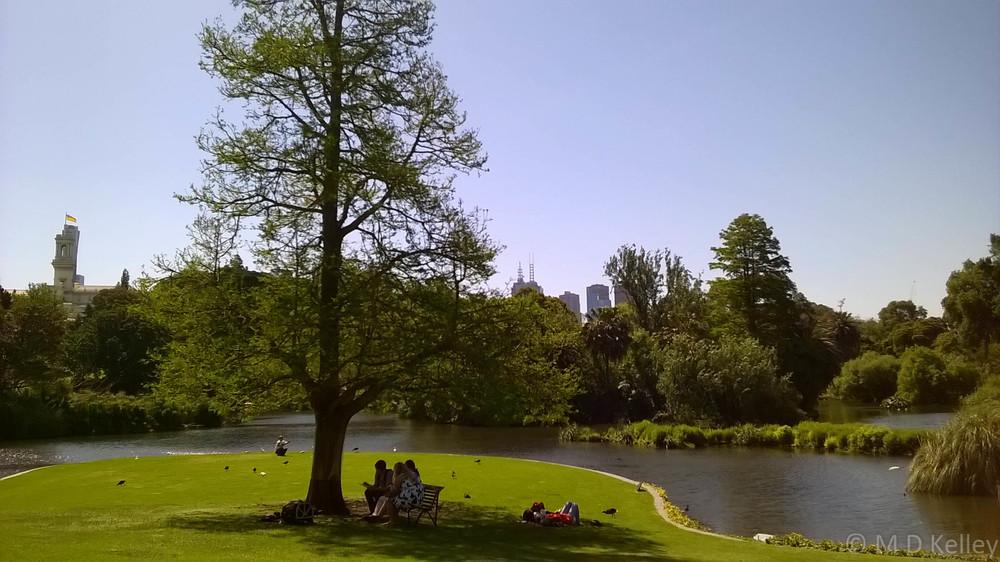 Sunday afternoon at Melbourne Botanic Gardens, Windows Phone.jpg