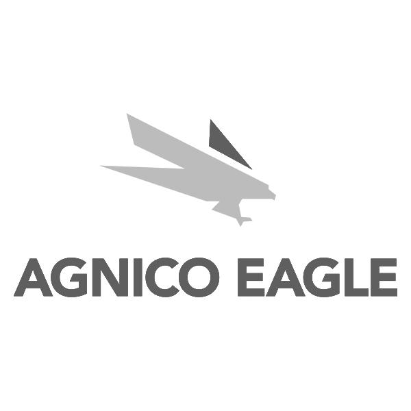 Agnico Eagle.jpg