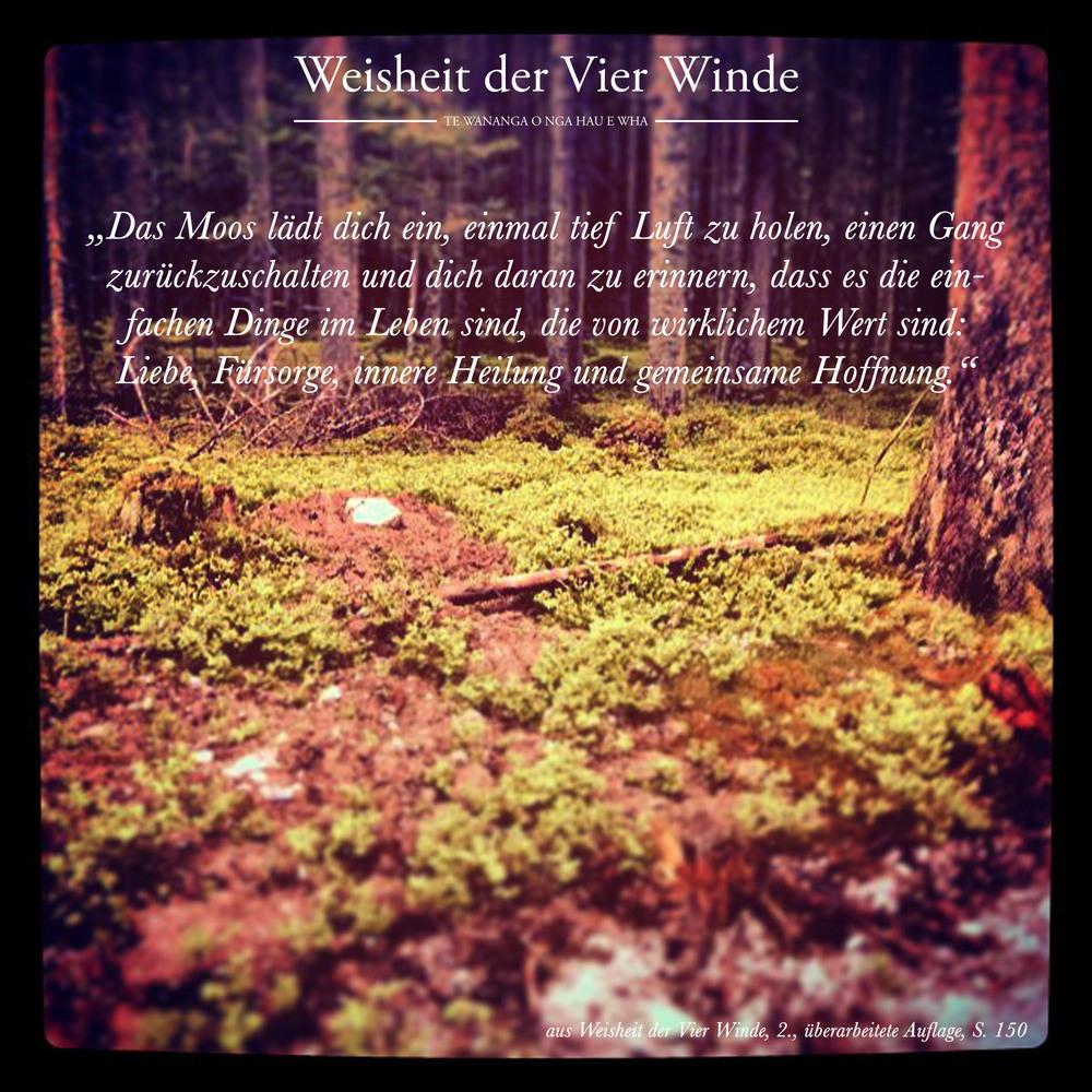 Weisheit der Vier Winde_Moos_wirkliche Werte