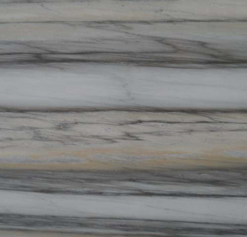 Zebrino Bianco