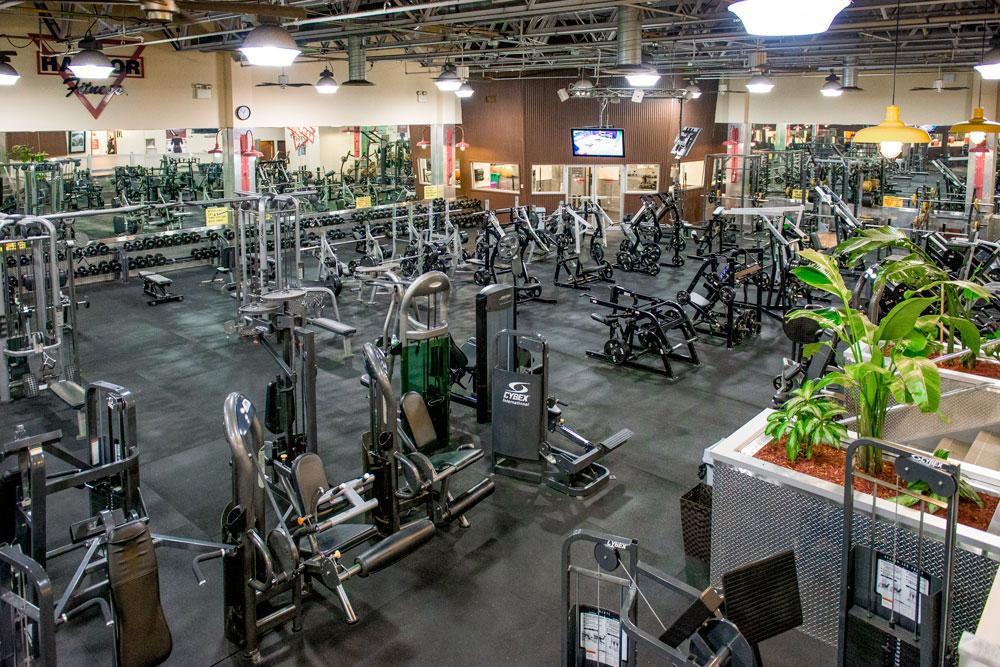Harbor Fitness Mill Basin Equipment