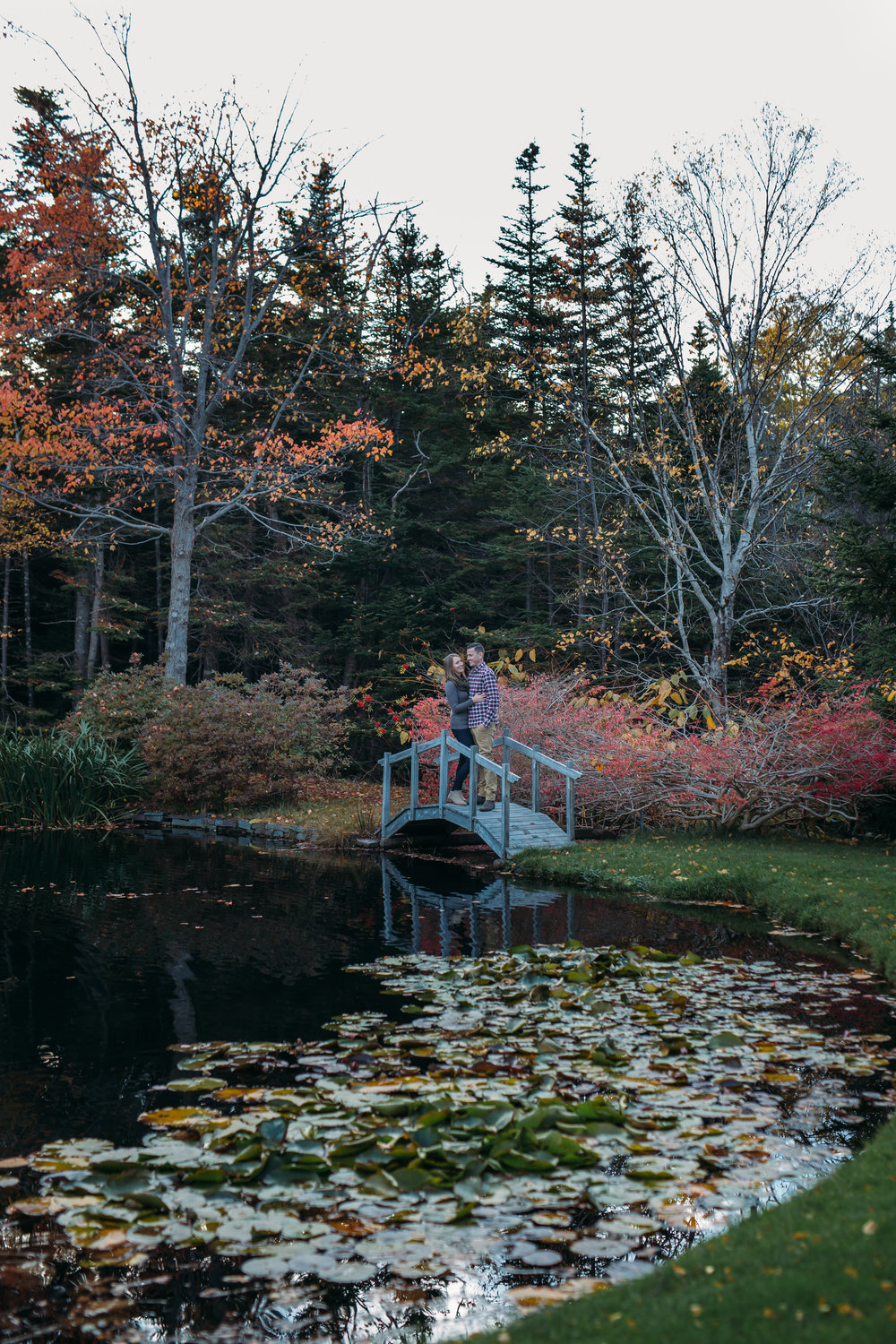 Frog Pond engagement session - Newfounland Photogreapher