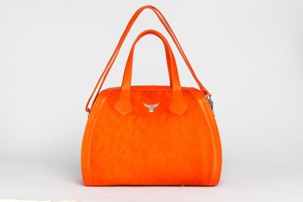 Orange Pricsilla.jpg