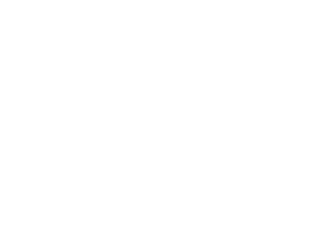 Cleveland Police Monitor