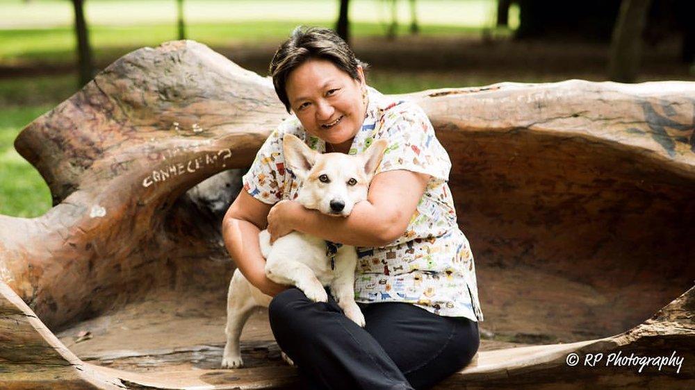 Pollyanna Tong Odontologia Veterinária