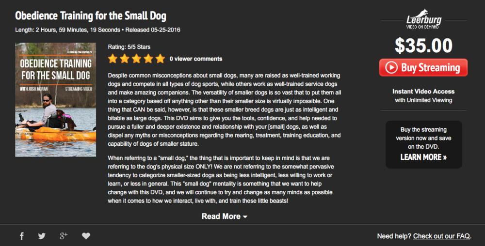Treinamento em obediência para cães pequenos