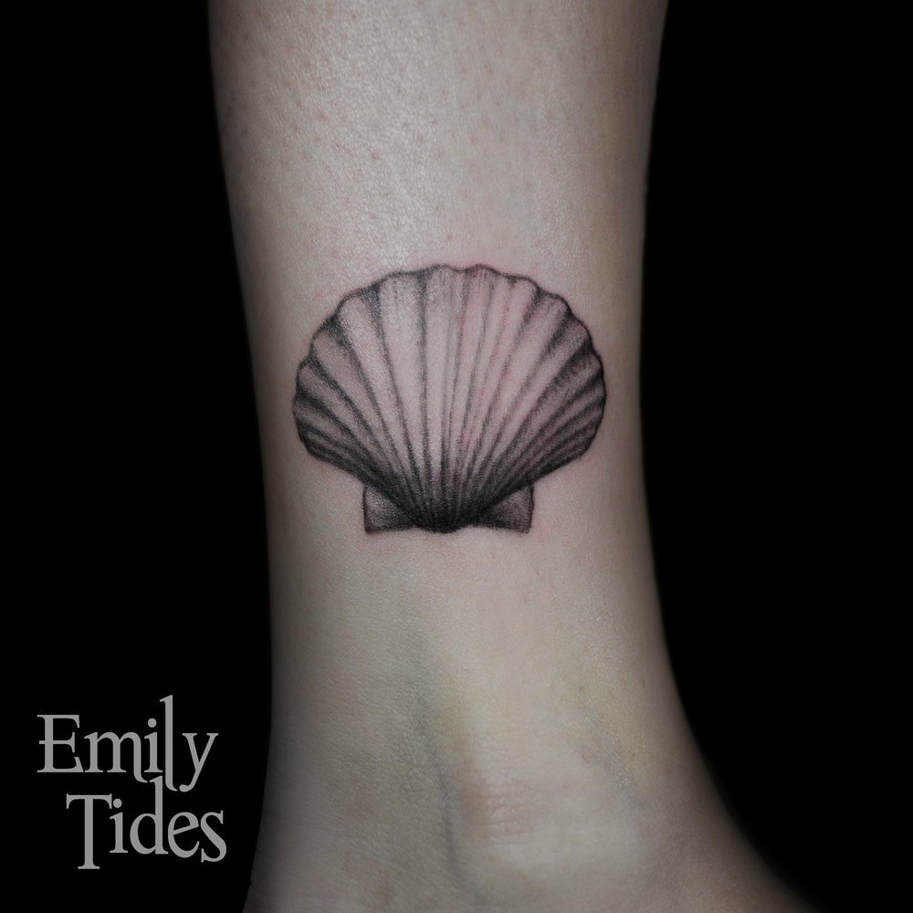 Scallop emily tides.jpg