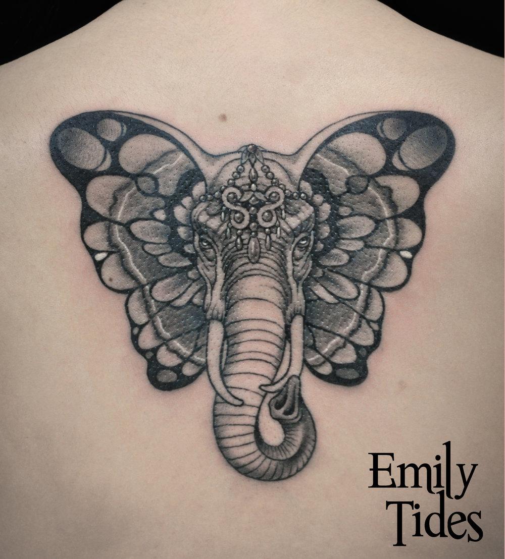 elephant butterfly emily tides.jpg