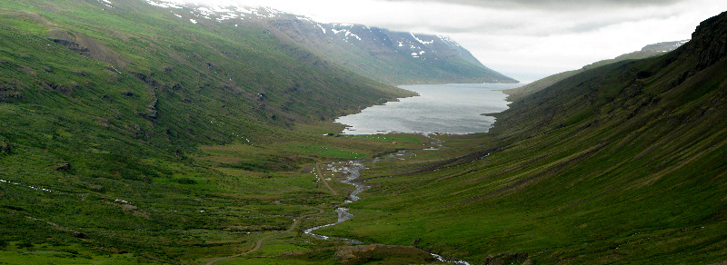 Islande-J6: Hofn- Fjords de l'Est- Hallormsstadur