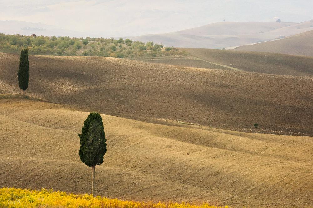 06102015-Toscane-132.jpg