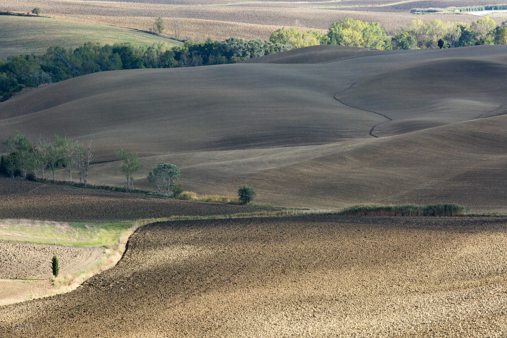 07102015-Toscane-731.jpg