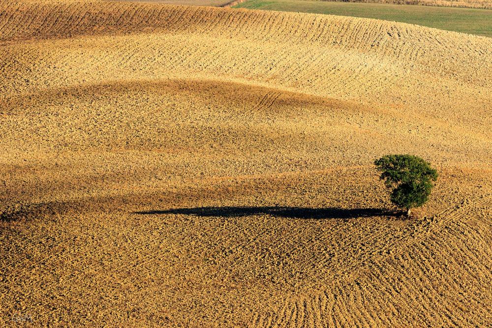 07102015-Toscane-814.jpg