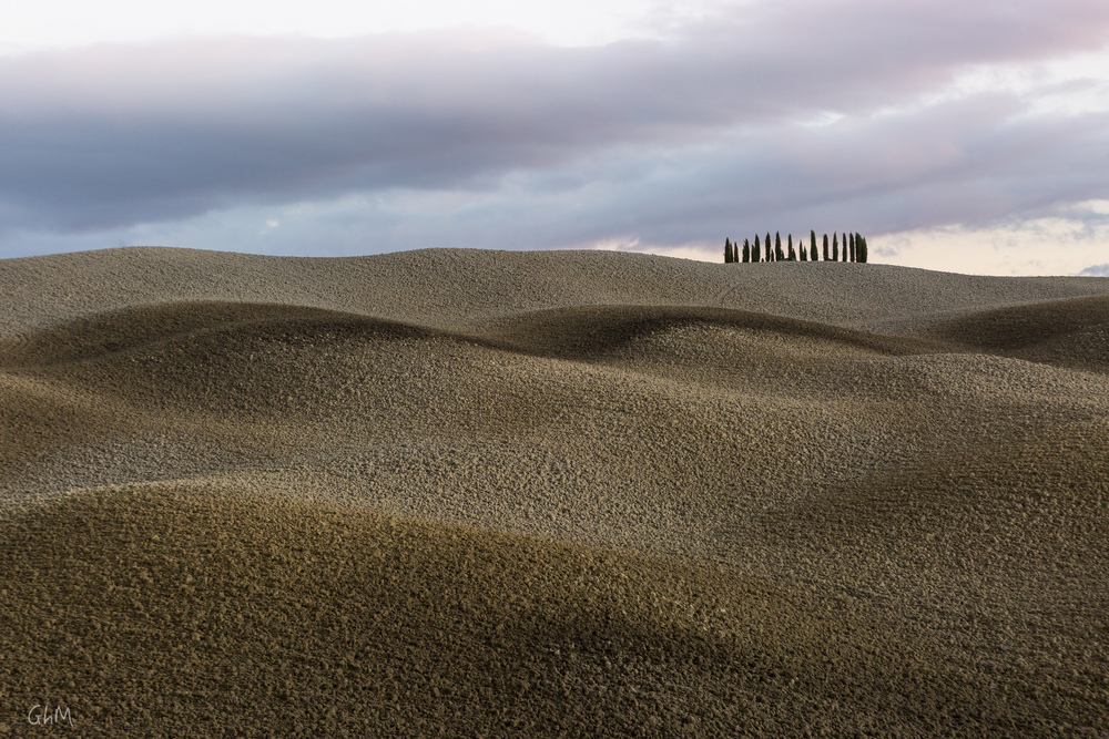 07102015-Toscane-896.jpg
