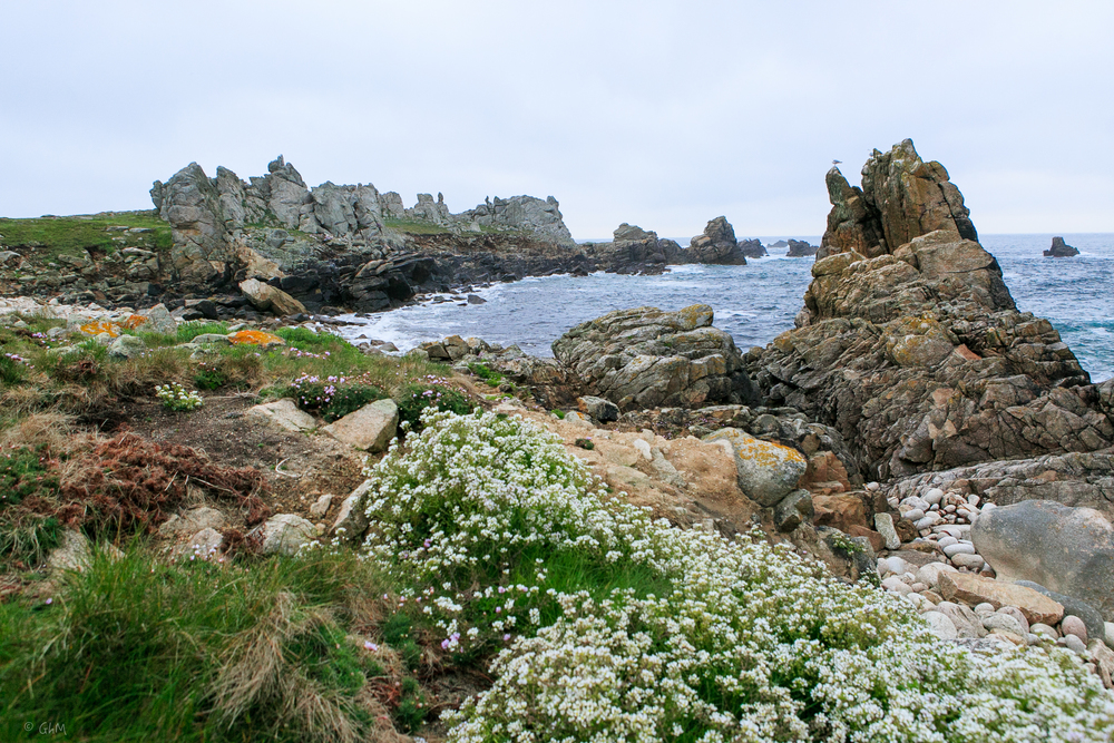 Ouessant -1030.jpg