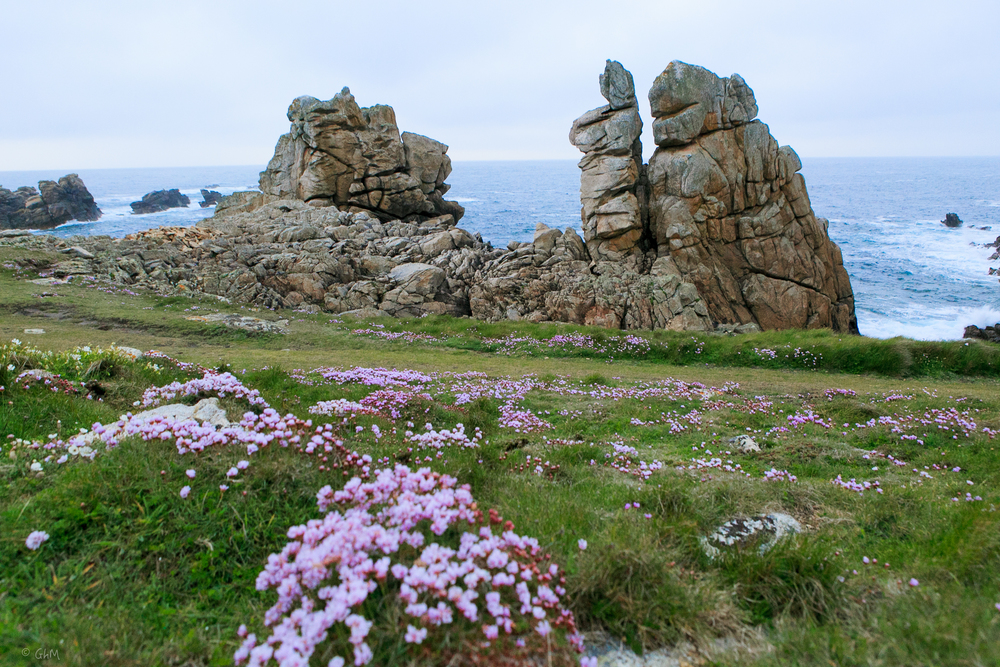 Ouessant -1043.jpg