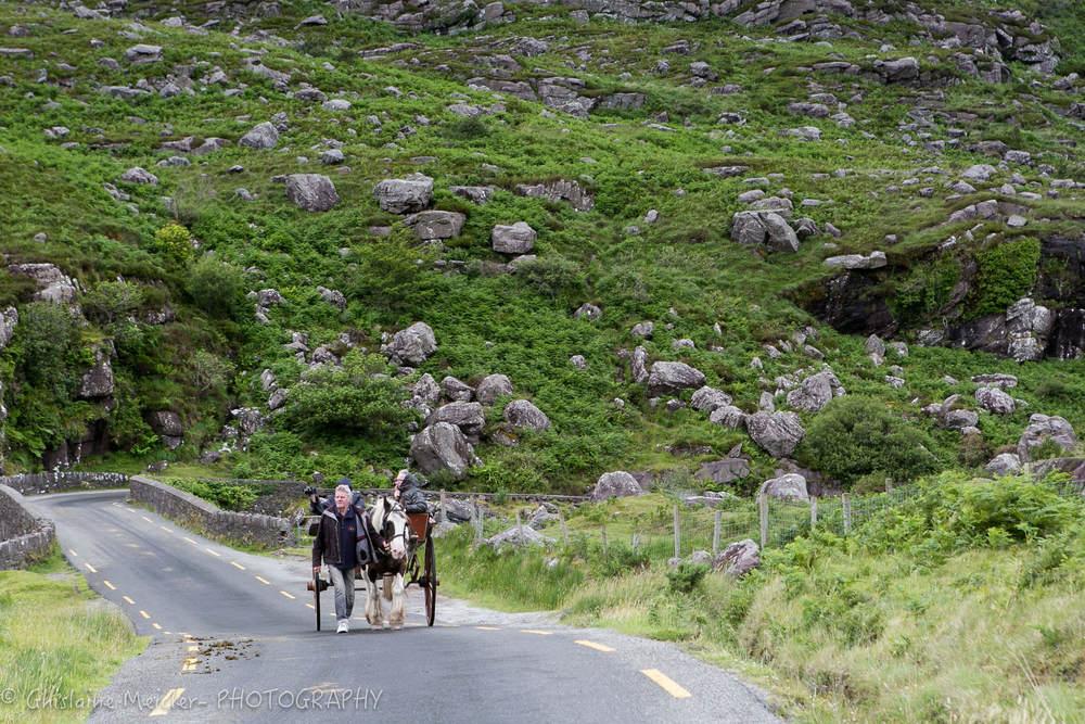 Irlande-1020.jpg