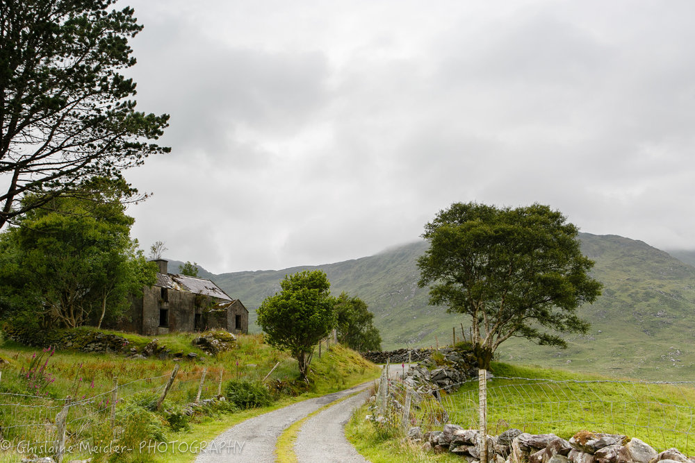Irlande-1220.jpg