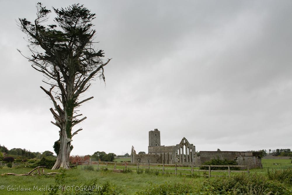 Irlande-1608.jpg