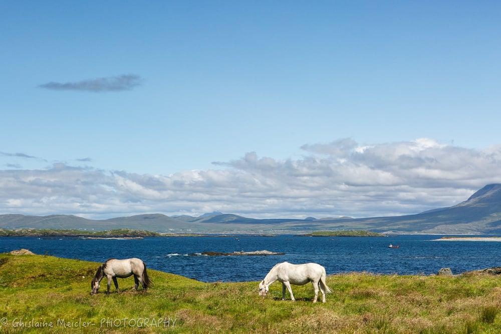 Irlande-2122.jpg