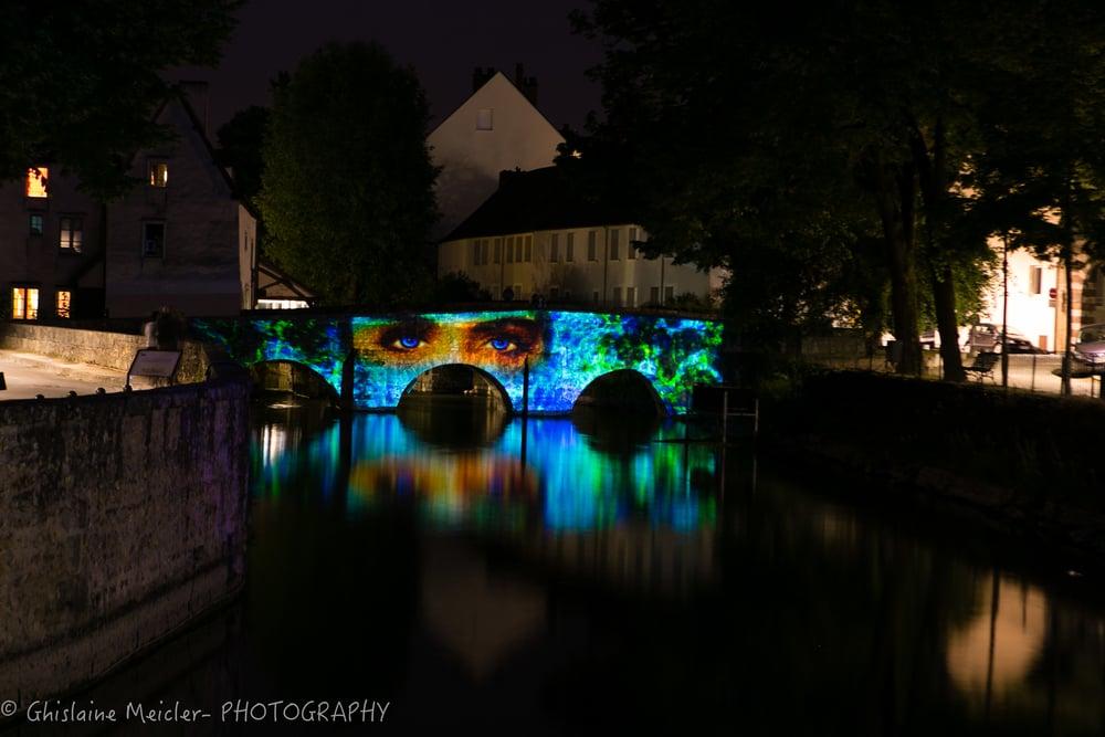 Chartres 2015-GHM_7025.jpg