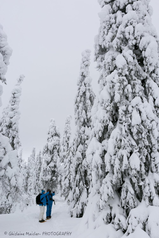 Ghislaine Meicler - Finlande-6181.jpg
