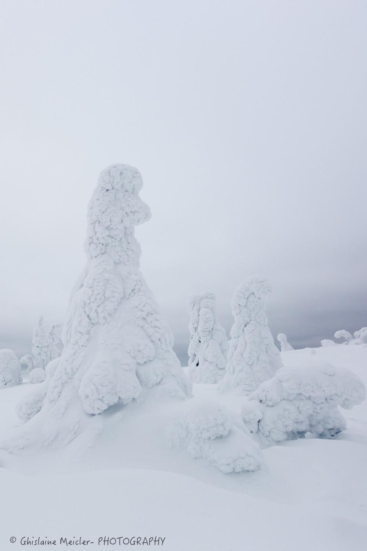 Ghislaine Meicler - Finlande-6237.jpg