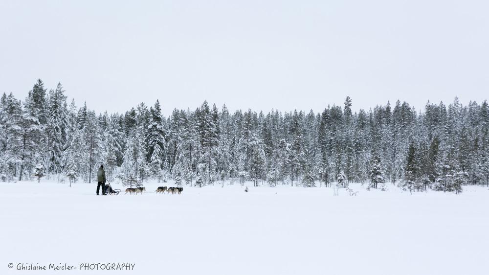 Finlande-3-7.jpg