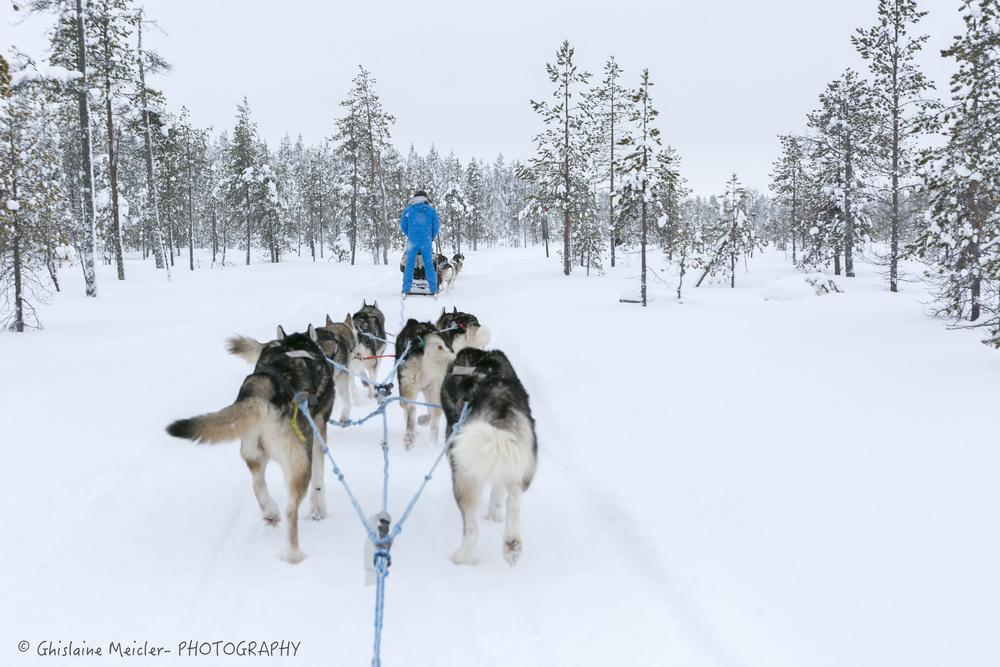 Finlande-3-2.jpg