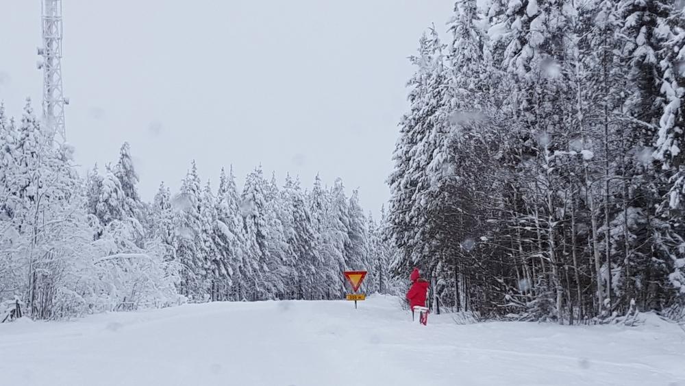 Finlande-130305.jpg