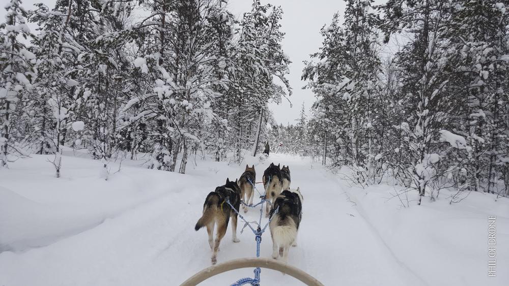 Phil-Finlande 135.jpg