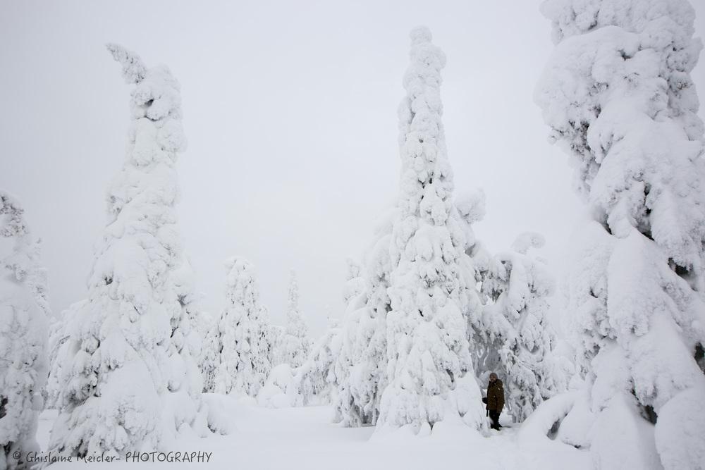 Finlande-475.jpg