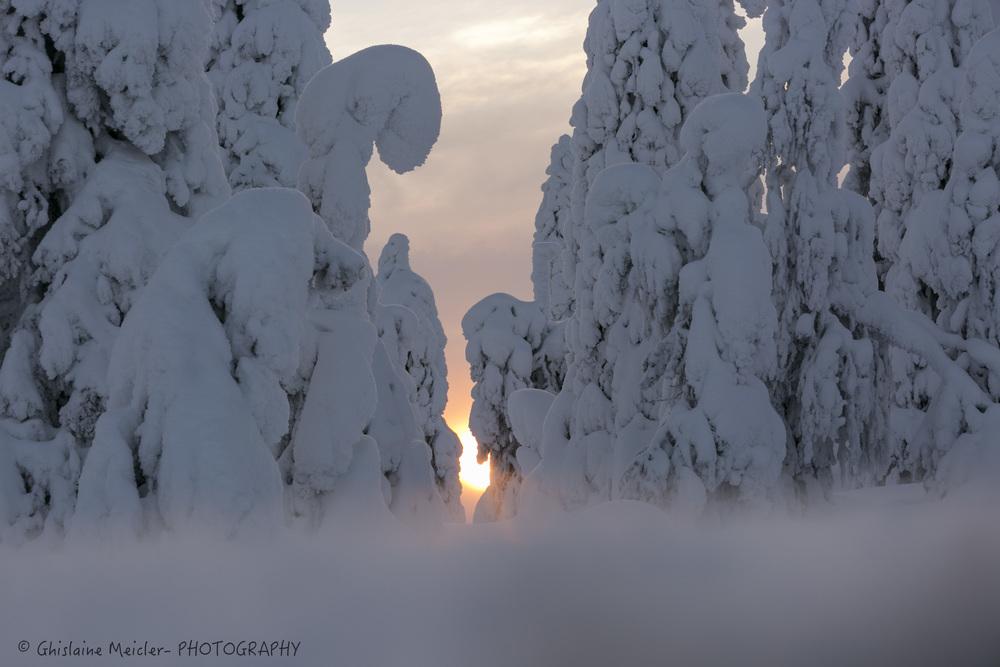 Finlande-41-4.jpg