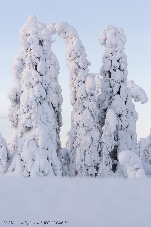 Finlande-57-3.jpg