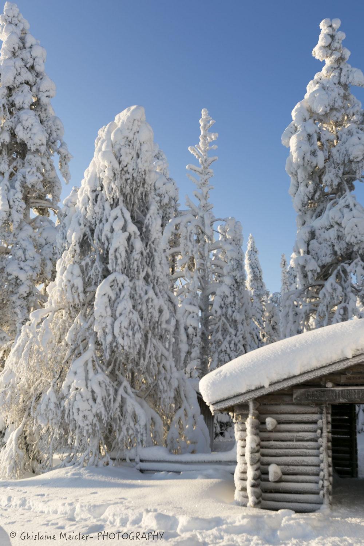 Ghislaine Meicler - Finlande-600.jpg