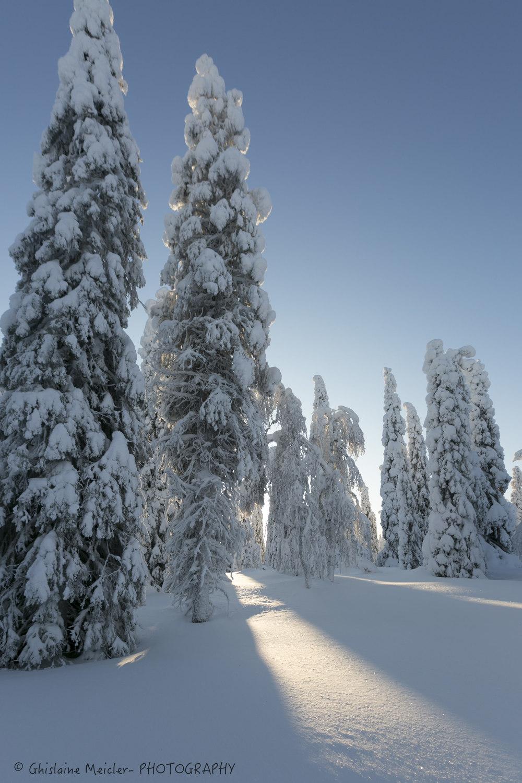 Ghislaine Meicler - Finlande-610.jpg