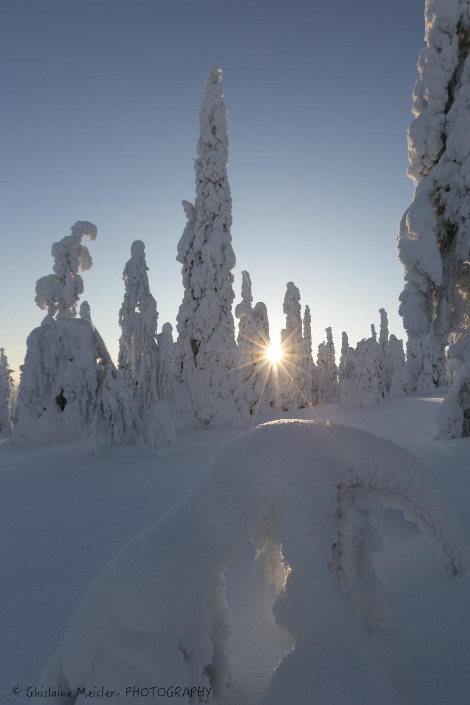 Ghislaine Meicler - Finlande-632.jpg