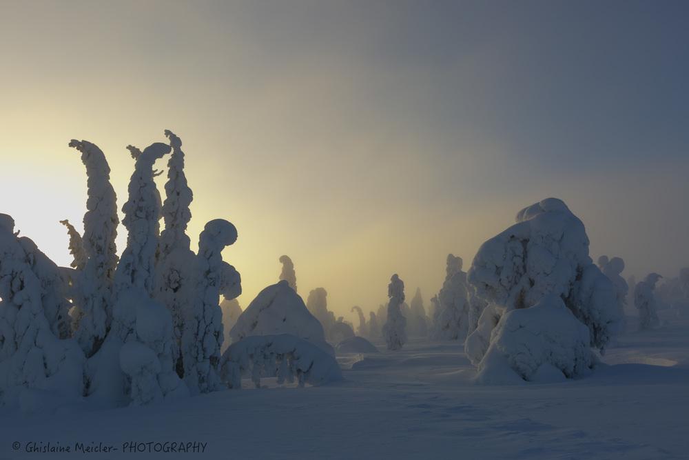 Finlande-666.jpg