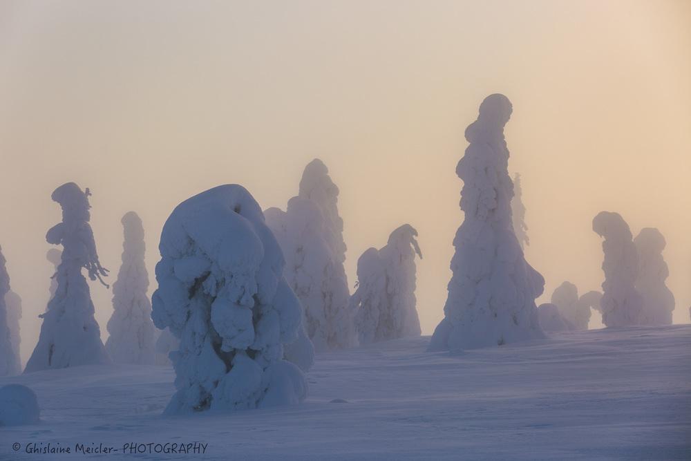 Finlande-686.jpg