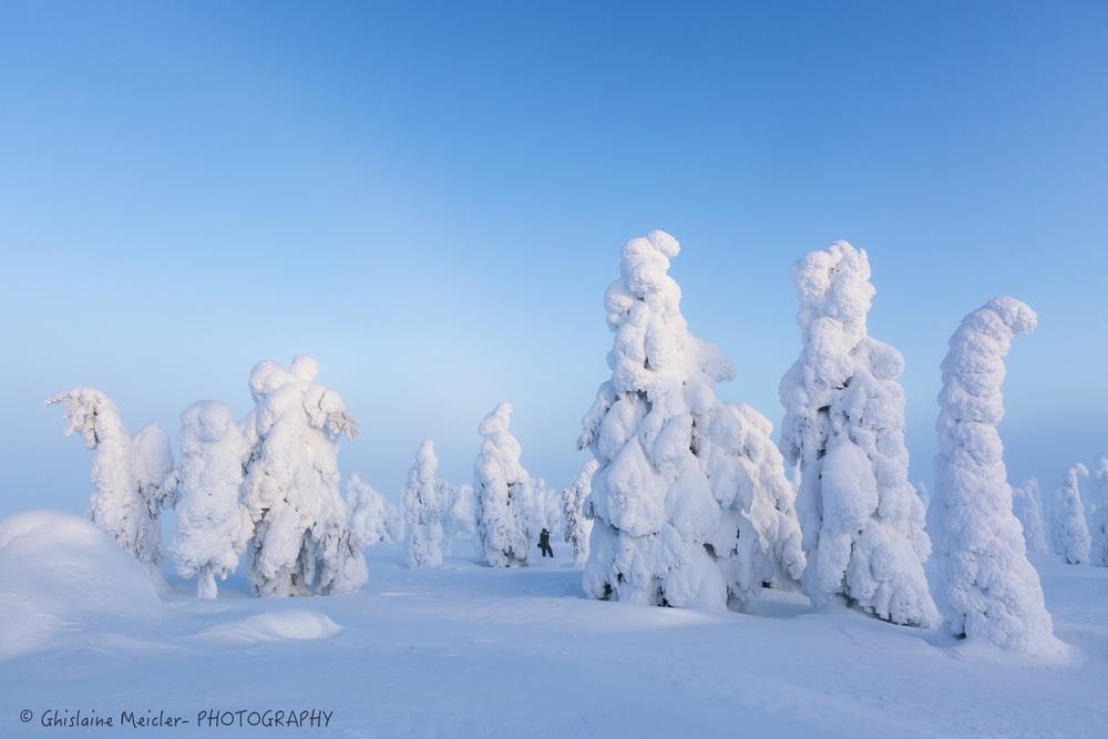 Finlande-697.jpg