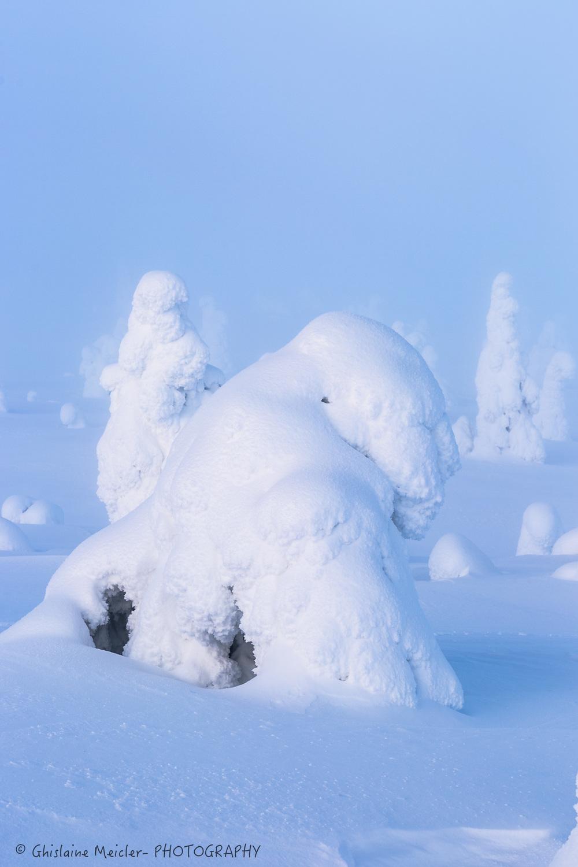 Finlande-692.jpg