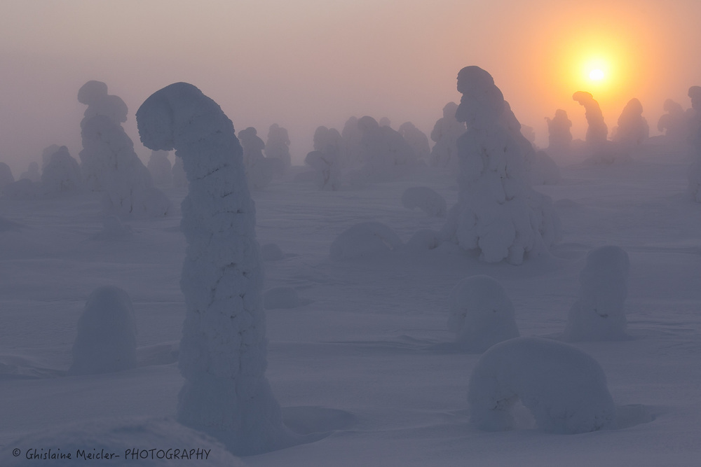 Finlande-772.jpg